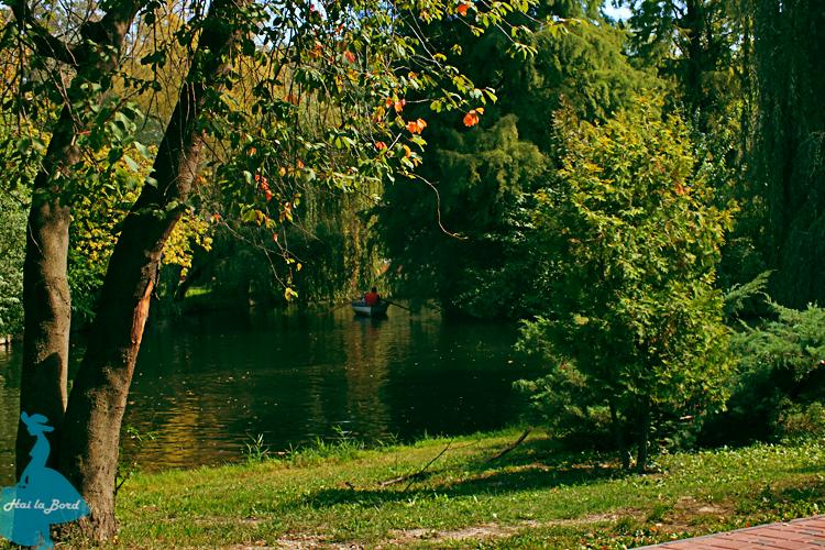 lac parc strand pitesti