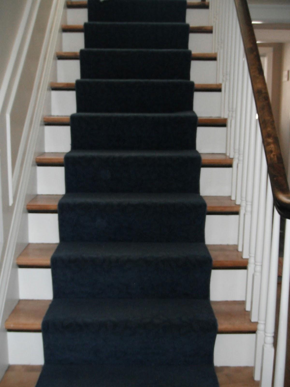 The Lovely Residence Battle Of The Navy Blue Carpet