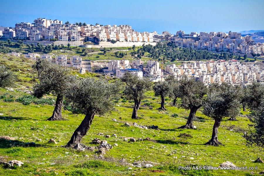 Пригород Иерусалима.
