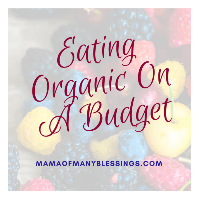 Eating-Organic-Food-On-A-Budget-square