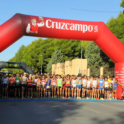 Media de Alcázar 2014 - Carrera