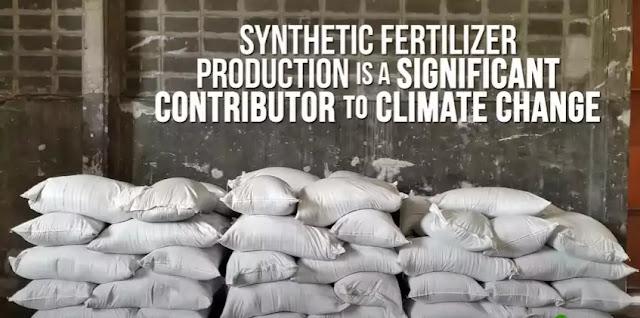 Plants That Fertilize Themselves_1