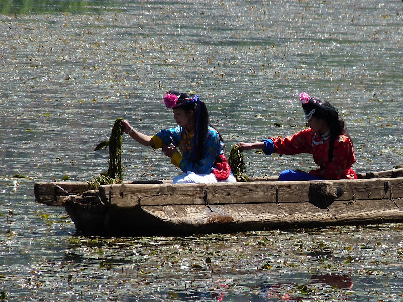 Chine Yunnan Lac LUGU, puis SHA XI - P1240163.JPG