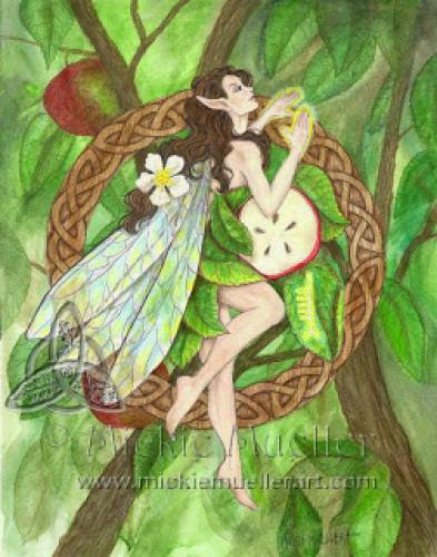 Celtic Tree Fairies Series One To Go