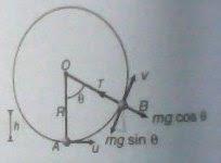 bob-trajectory