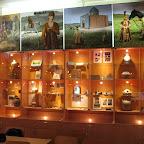 Археологический музей ВГУ 004.jpg