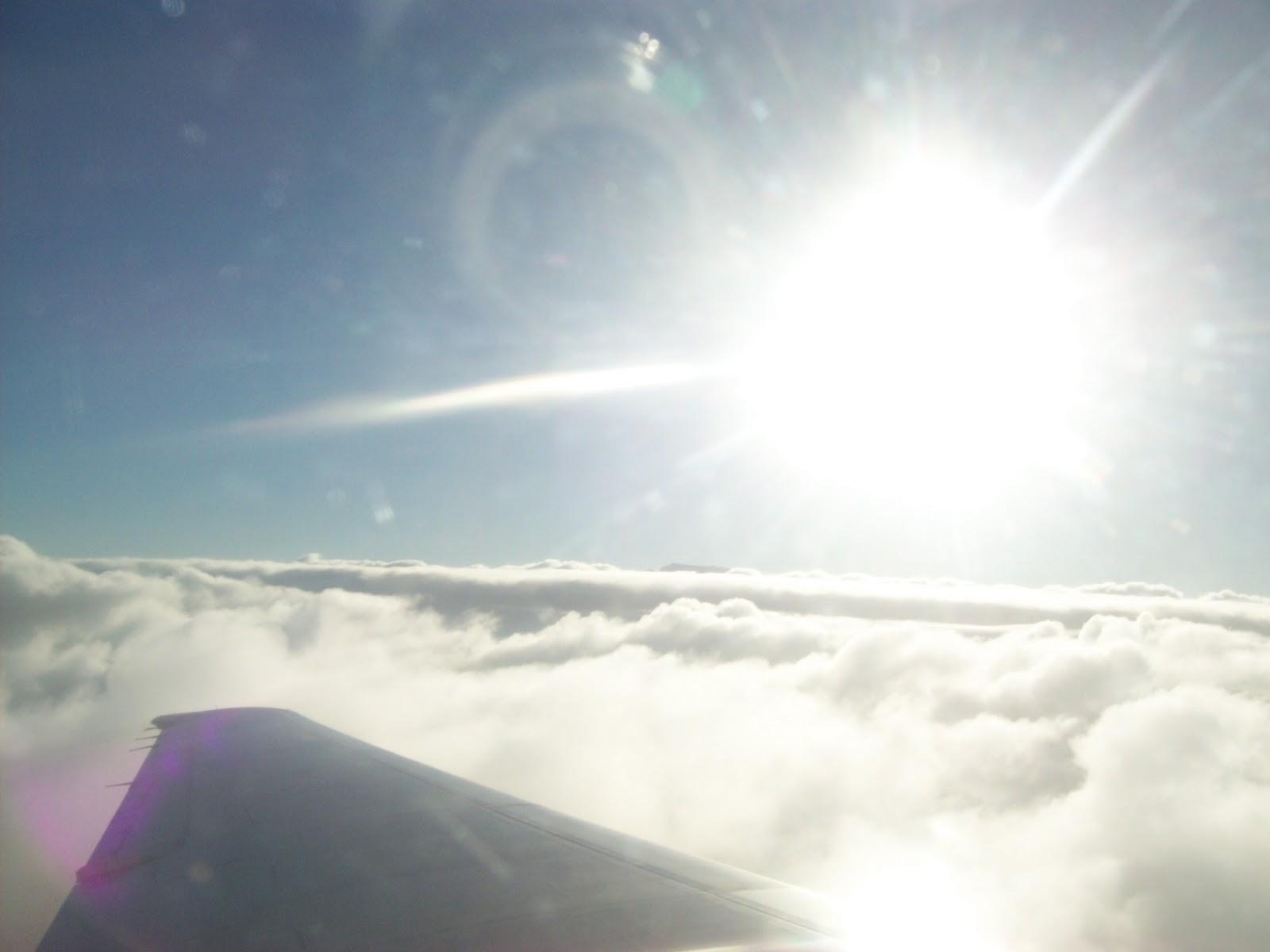 Hawaii Day 8 - 100_8199.JPG