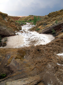 Flash flood in Three Finger Canyon