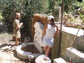 cogolin réalisation de mur végétal autour d!une fontaine