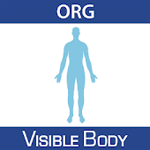 Physiology Animations 16 (Org.)