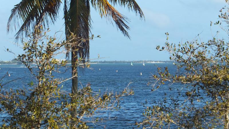 Vista de Key Biscayne desde Alice Wainwright Park, Miami