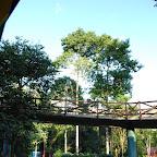 Recorridos por el Parque Nacional del Café