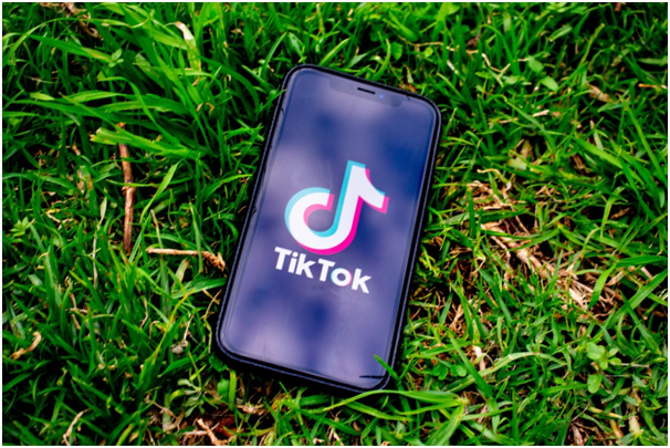 Which Video Has the Most Views on TikTok?