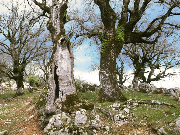 Hiking in Lefkada | Walk starting from Kolyvata | Lefkada Slow Guide