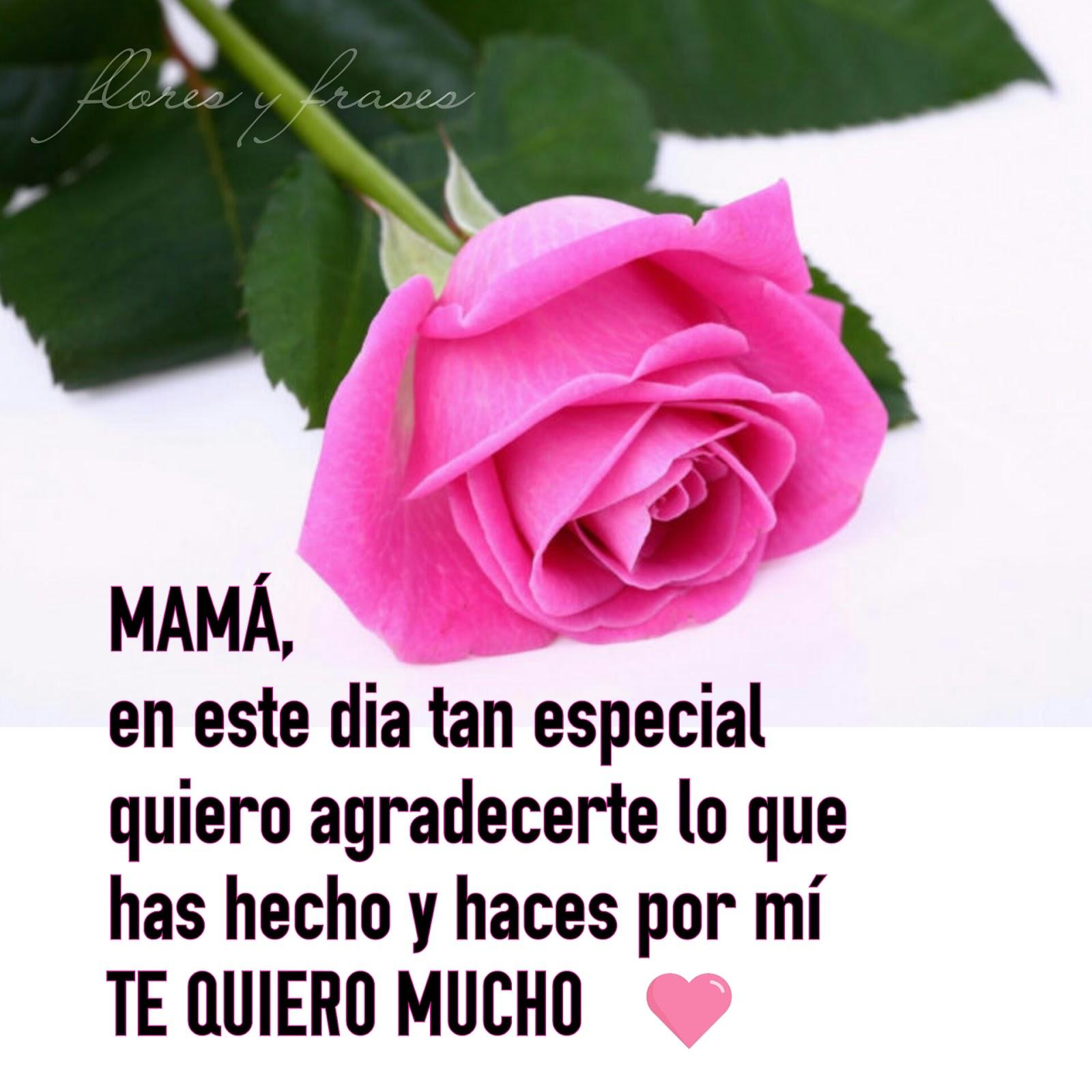 Flores Y Frases Postales Y Mensajes Para Las Madres En Su Dia