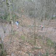 JS Bilberry Hill 2010 045.jpg