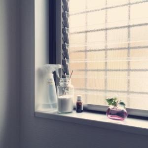 トイレ掃除 アルカリウォッシュ(セスキ炭酸ソーダ)