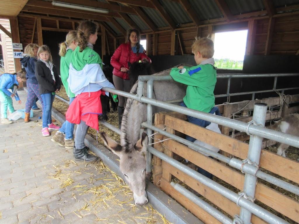 Welpen - Kinderboerderij & Crossbaan - IMG_2499.JPG