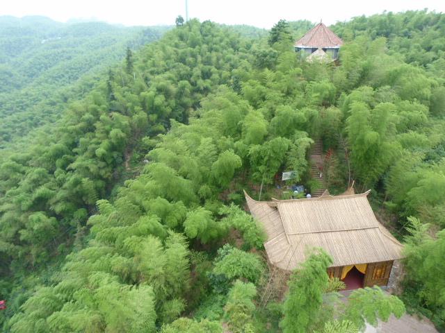 CHINE.SICHUAN.YIBIN, et la mer de Bambous - 1sichuan%2B532.JPG