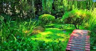 El área de Turismo no sólo hace gala de sus playas, sino también de su naturaleza, como el Jardín Botánico La Almunya del Sur.