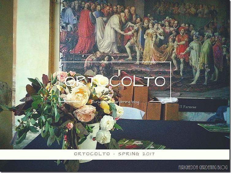 Ortocolto 0