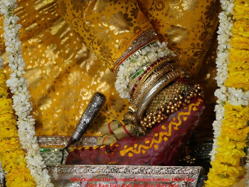 Radha Govind Devji Deity Darshan 2 April  2016  (16)