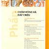AtlasChauhong (1)_Xray.vn.jpg