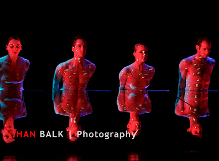 Han Balk Wonderland-7397.jpg