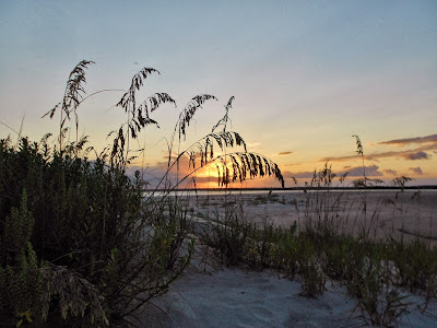 Sunset Behind Sea Oats