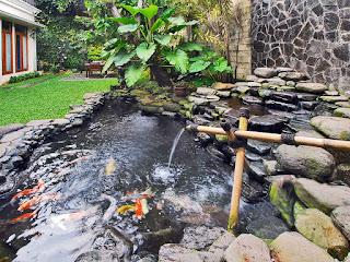 pembuatan kolam minimalis