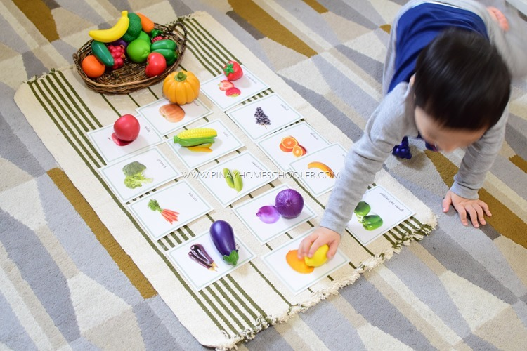 Montessori Vegetable Cards
