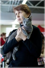 cats-show-24-03-2012-fife-spb-www.coonplanet.ru-048.jpg