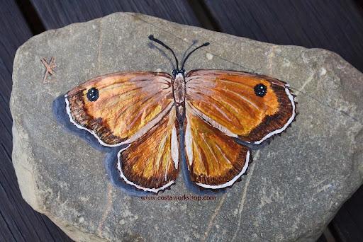 bruine vlinder wl.jpg