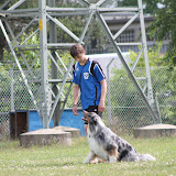 ATM Cup Sporthunde Franken - ATM%2BCup%2BSporthunde%2BFranken%2B120.JPG