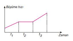 Büyüme hızı zaman grafiği