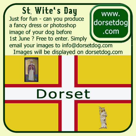 Doggy fancy dress for St Wite's Day on 1st June at www.dorsetdog.com