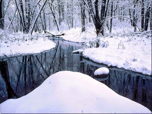 Snowy_Creek.jpg