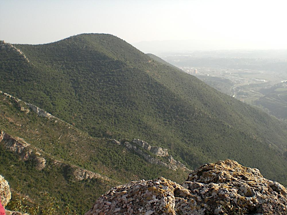 Sortida Sant Salvador de les espasses 2006 - CIMG8285.JPG
