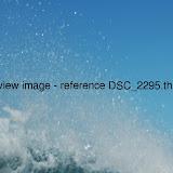DSC_2295.thumb.jpg