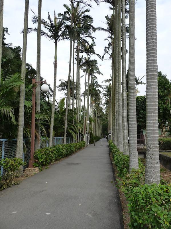 TAIWAN.Taipei. Dans le jardin de lune des nombreuses résidence présidentielle de CKS - P1050033.JPG