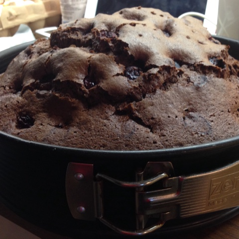 Gebackener Kirsch-Schoko-Kuchen