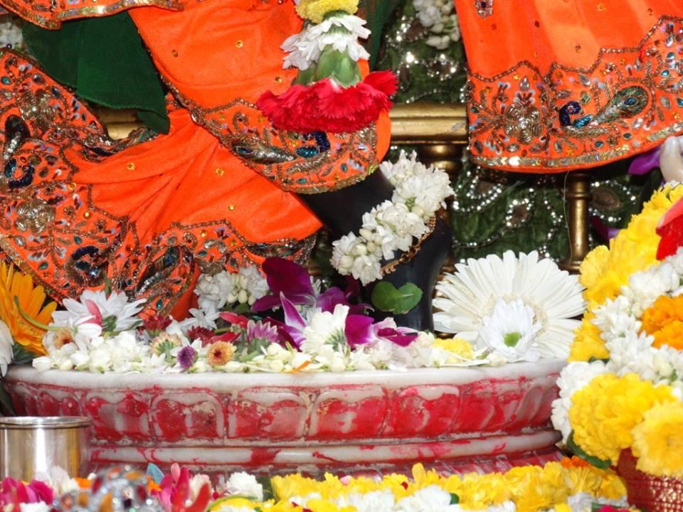 ISKCON Punjabi Bagh Deity Darshan 09 April 2016 (9)