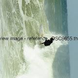 _DSC9655.thumb.jpg