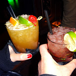 drinks in Den Haag, Zuid Holland, Netherlands