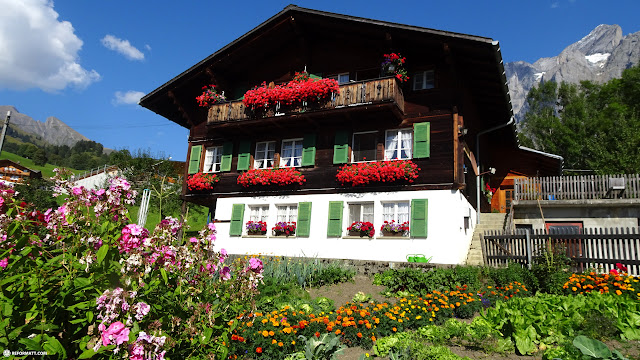 gorgeous Swiss houses on the Trotti bike trail in Grindelwald, Bern, Switzerland