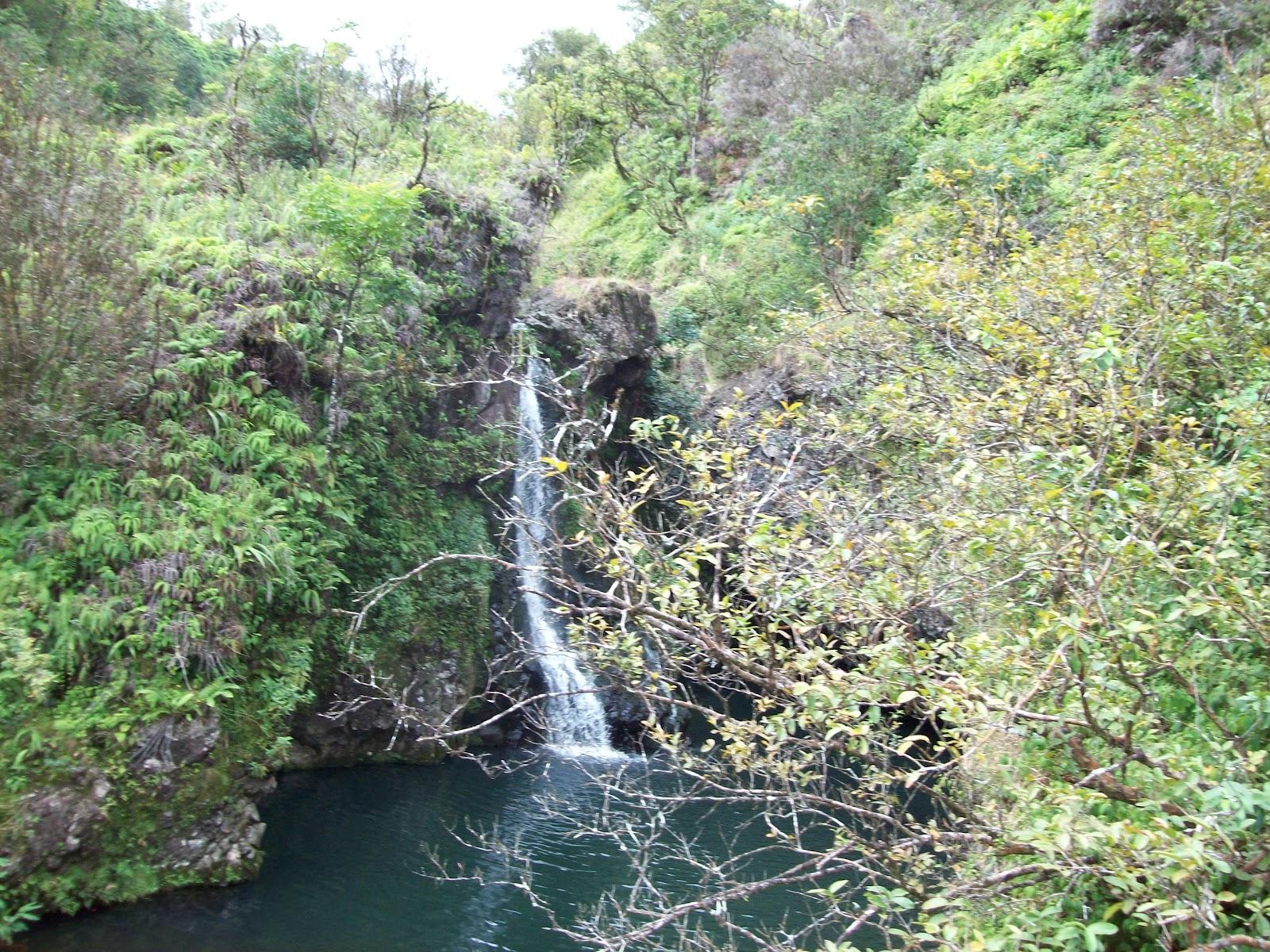 Hawaii Day 5 - 114_1494.JPG