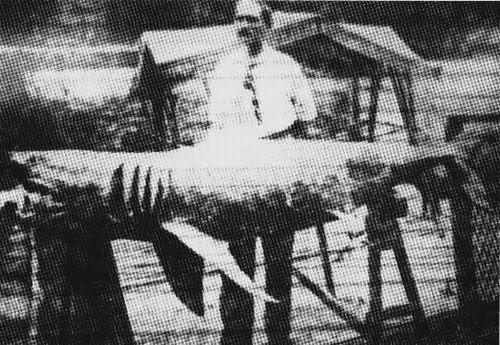 ニュージャージーサメ襲撃事故2