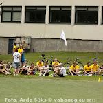 2013.08.09-11 Eesti Ettevõtete Suvemängud 2013 Elvas - AS20130809FSSM_100S.jpg
