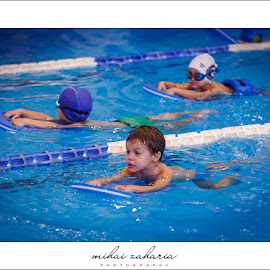 20161217-Little-Swimmers-IV-concurs-0071