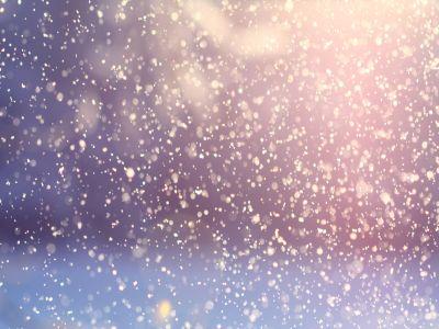 Felicitari iarna